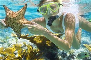 """""""Tan chảy"""" với trải nghiệm tuyệt đỉnh ngắm san hô tại Cát Bà"""